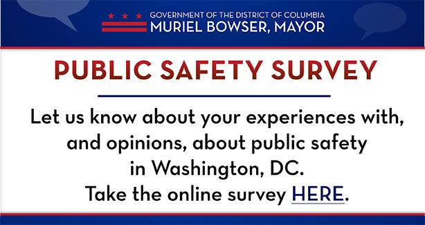 Public Safety Survey